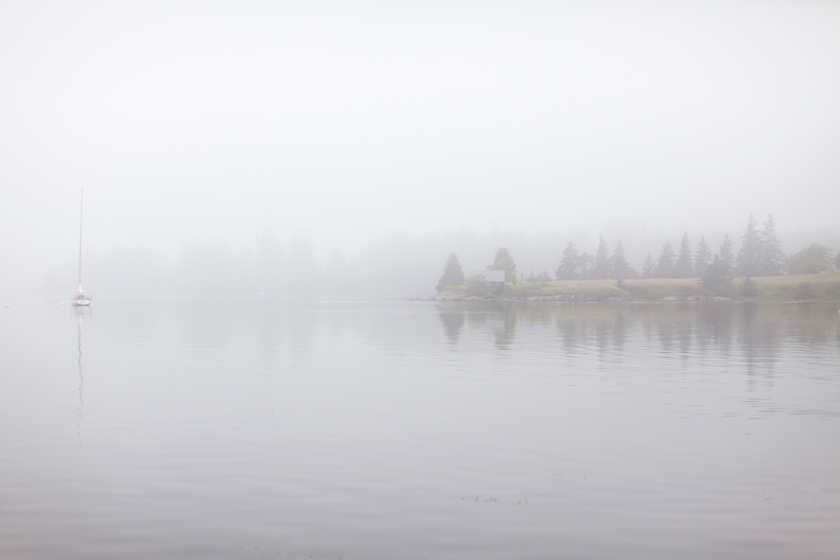 mainefog.jpg
